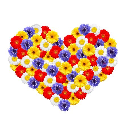 Colorful  summer flowers forming shape of a heart on white background