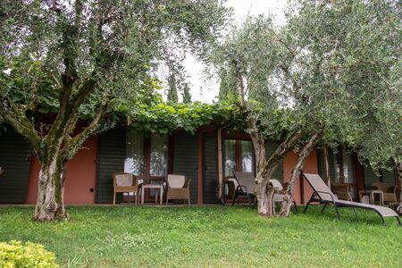 Wooden cottage for holidays with green lawns and olive trees. Natural environment to spend relaxing time in contact with nature.