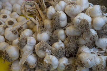Close up of helmet of garlic on sale at the market. Stock fotó