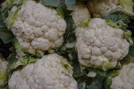 White cauliflower is a vegetable. On sale in a vegetable shop.
