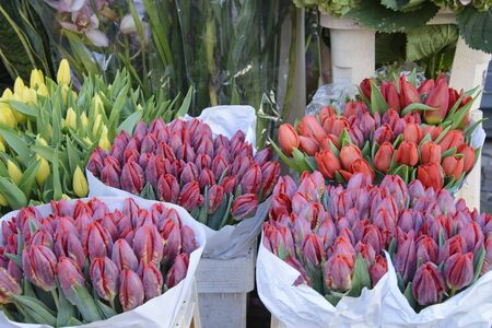 Bouquet of tulips on sale in a street shop.