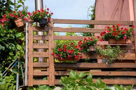 Balcony of a villa with flower pots, Italy.