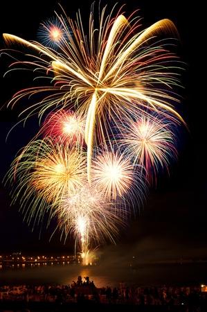 Helder kleurrijk vuurwerk en groeten van verschillende kleuren in de nachtelijke hemel