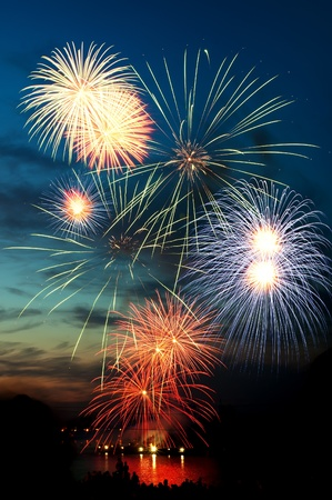 Brightly colorful fireworks and salute of vaus colors in the night sky Stock Photo - 9844356