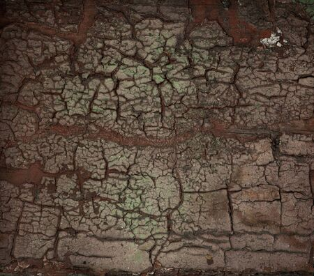dirty old cracked wall background close up photo
