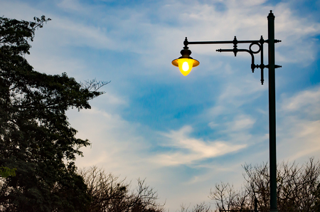 Street Lamp with Tree and Twilight Sky in The City Park.