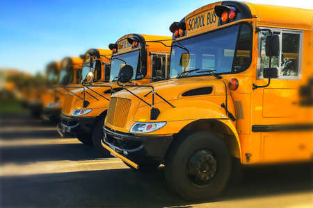 Low angle view of the front end of yellow public school buses parked in in a row seen from driver side