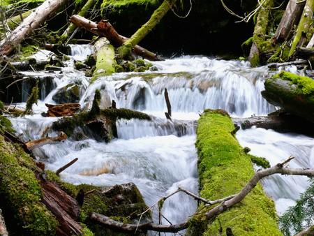 mountain stream: Cascading mountain stream