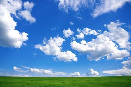 Spring Landscape - green field and blue cloudy sky  photo