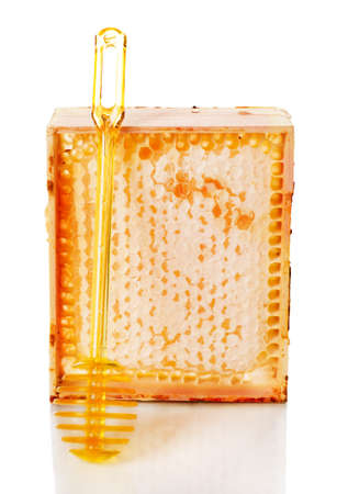 Honey comb in a wooden frame photo