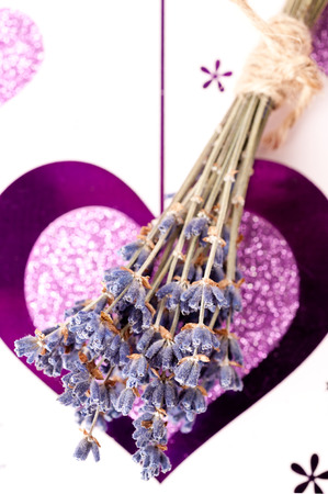Small bouquet of lavender on a background with a heart photo