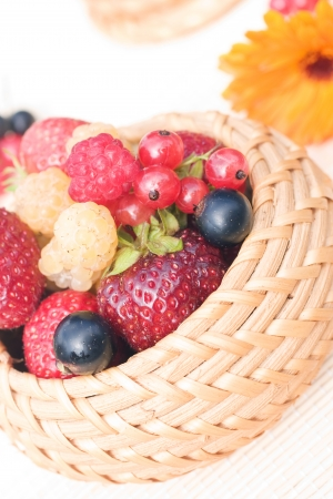 bast basket: Strawberry, raspberry, black currant, red currant in a bast basket