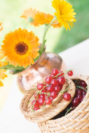 Red currant in a basket and a calendula bouquet Stock Photo