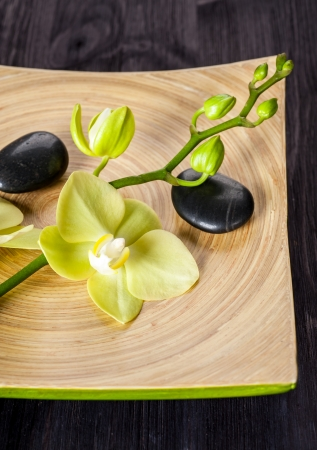 Spa with flowers orchids photo
