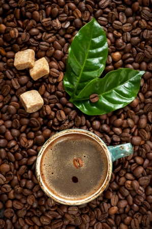 Cup of espresso coffee on a background coffee beans with green leaves photo