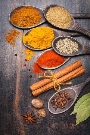Fűszerek és gyógynövények a sötét háttér. Paprika, a kurkuma, masala, fahéj, koriander, szerecsendió, csillagánizs, babérlevél, szegfűszeg