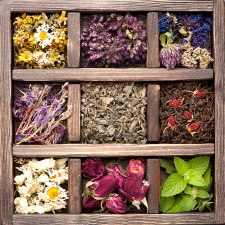 medicinal herb: Dried Herbs and flowers in vintage box. Collage.
