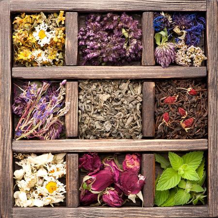 Gedroogde kruiden en bloemen in vintage doos. Collage. Stockfoto