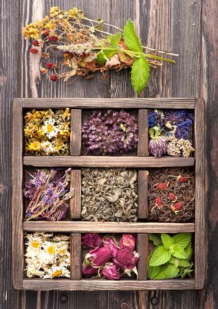 Szárított gyógynövények és a virágok vintage doboz