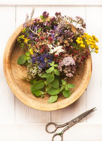 herbal medicine. Herbs and flowers
