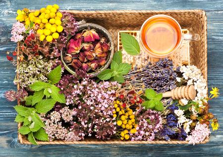 Kruidenmedicijn. kruiden en bloemen in de mand. Bovenaanzicht, horizontaal
