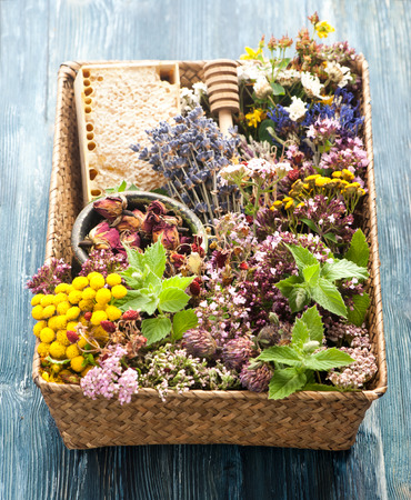 honey comb: Dried and fresh herbs and flowers and honey comb.  Herbal medicine