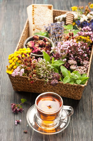 Dried and fresh herbs and flowers and herbal tea. Herbal medicine