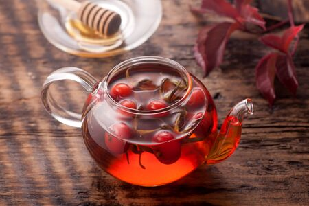 Tea of rosehip Stockfoto
