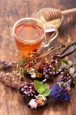 herbalism: Herbal tea with honey and medicinal herbs