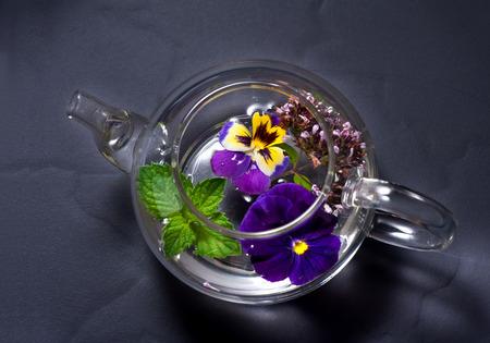 oregano: Tea with mint and oregano Stock Photo