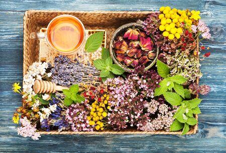 Healing herbs and flowers in a tray, honey and herbal tea. herbal medicine Stock fotó