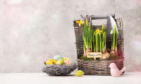 happy easter festive banner with Easter eggs, decorations and beautiful spring flowers in the basket. Easter concept with copy space