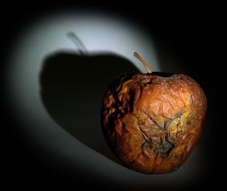 putrid: Rotten apple in dark. Play with light.  Stock Photo