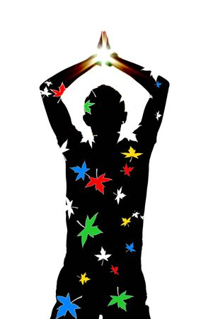Silhouette and star. Element of design. photo