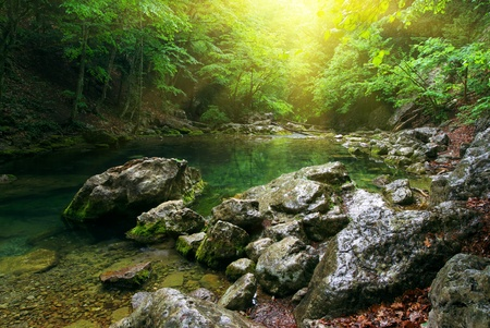 background waterfalls: River deep in mountain forest. Nature composition. Stock Photo