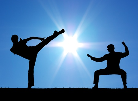 tai chi: Two warrior silhouettes on the sun background.