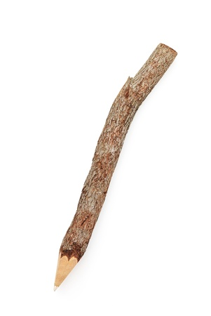 Isolated pencil from branch of tree. Element of design. photo
