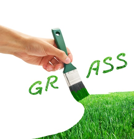 Drawing the green grass. Element of design.  photo