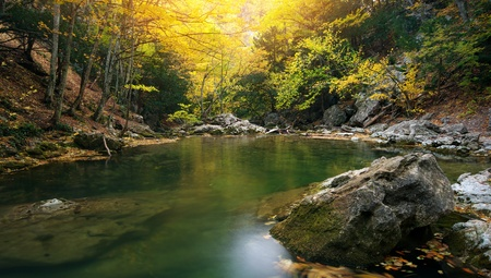 rock creek:   Lake in autumn forest. Nature composition. Stock Photo