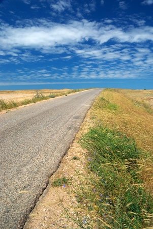 Road in desert. Element of design. Stock Photo - 9141476