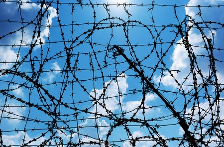 prisoner of war: Barbed wire and freedom. Conseptual design.