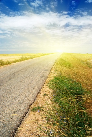 Road in desert. Element of design. Stock Photo - 9235376