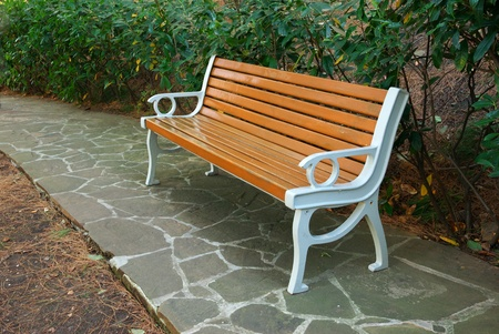 Bench in park. Nature composition. Stock Photo - 9235447