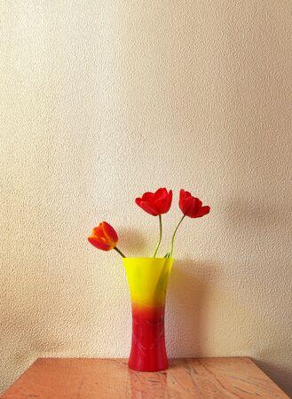 Three tulip in vase. Decoration in room. photo
