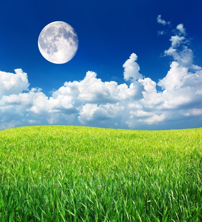 Moon and spring green meadow. Nature composition. photo