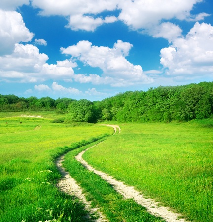 single lane road: Lane in meadow and deep blue sky. Nature design.  Stock Photo