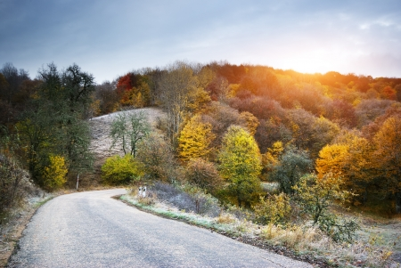 fall scenery: Autumn landscape. Composition of nature.