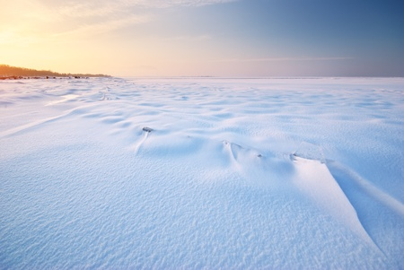 Winter landscape. Composition of nature. Stock Photo - 14790578