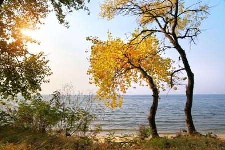 Autumn landscape. Composition of nature. Stock Photo - 14790742