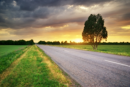 Road in meadow on sundown. Nature composition. Stock Photo - 17324828